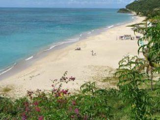 Plages Antigua