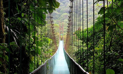 Monte Verde Bridge